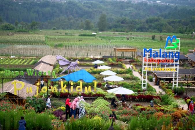 Pujon Kidul Wisata Alam Lengkap Murah Cafe Sawah Kab Malang