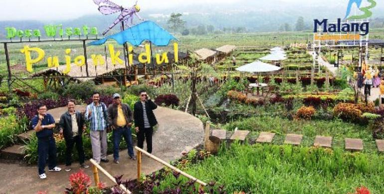 Setahun Cafe Sawah Pujon Kidul Beromset Rp 4 Klikapa Kab