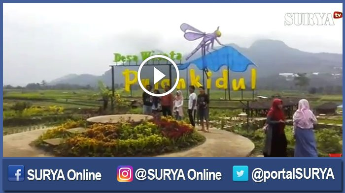 Video Sajian Cafe Sawah Pujon Kidul Malang Surya Kab