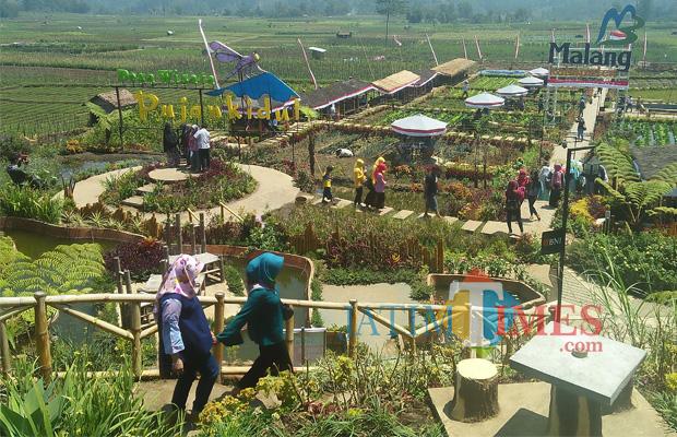 Wisata Genap Setahun Omzet Desa Pujon Kidul Kabupaten Cafe Sawah