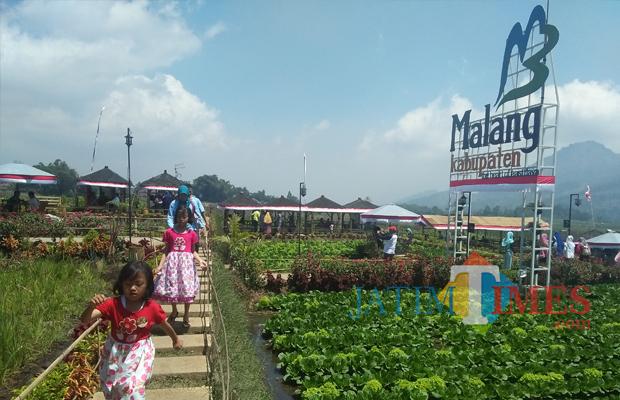 Wisata Kabupaten Malang Bakal Suguhkan Edukasi Keindahan Desa Cafe Sawah