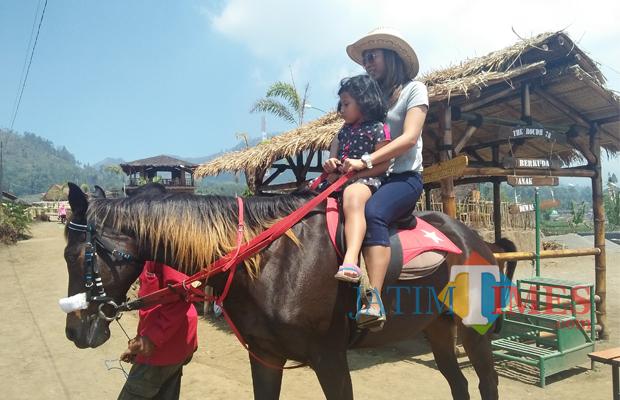 Wisata Serunya Tantangan Berkuda Desa Cafe Sawah Pujon Wisatawan Menikmati