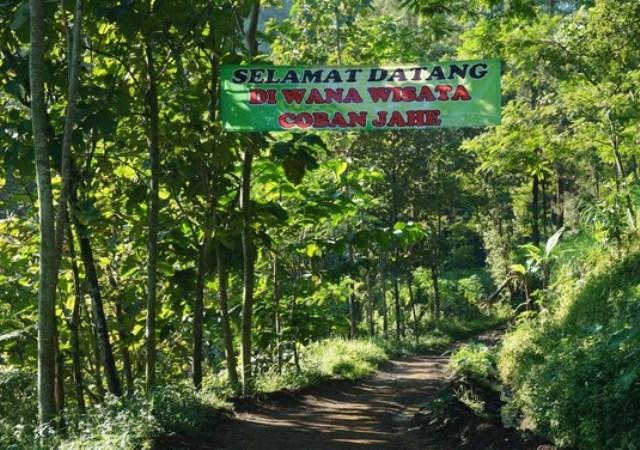 10 Gambar Coban Jahe Malang Jawa Timur Rute Harga Tiket