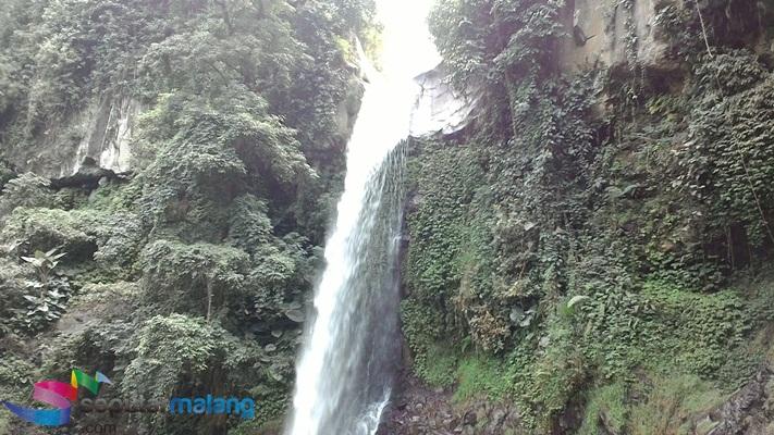 Berita Info Wanawisata Coban Jahe Tawarkan Sensasi River Tubing Lokasi