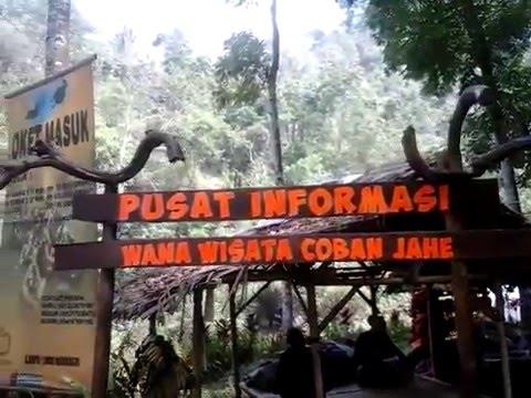 Pesona Wisata Air Terjun Coban Jahe Jabung Kota Malang Youtube