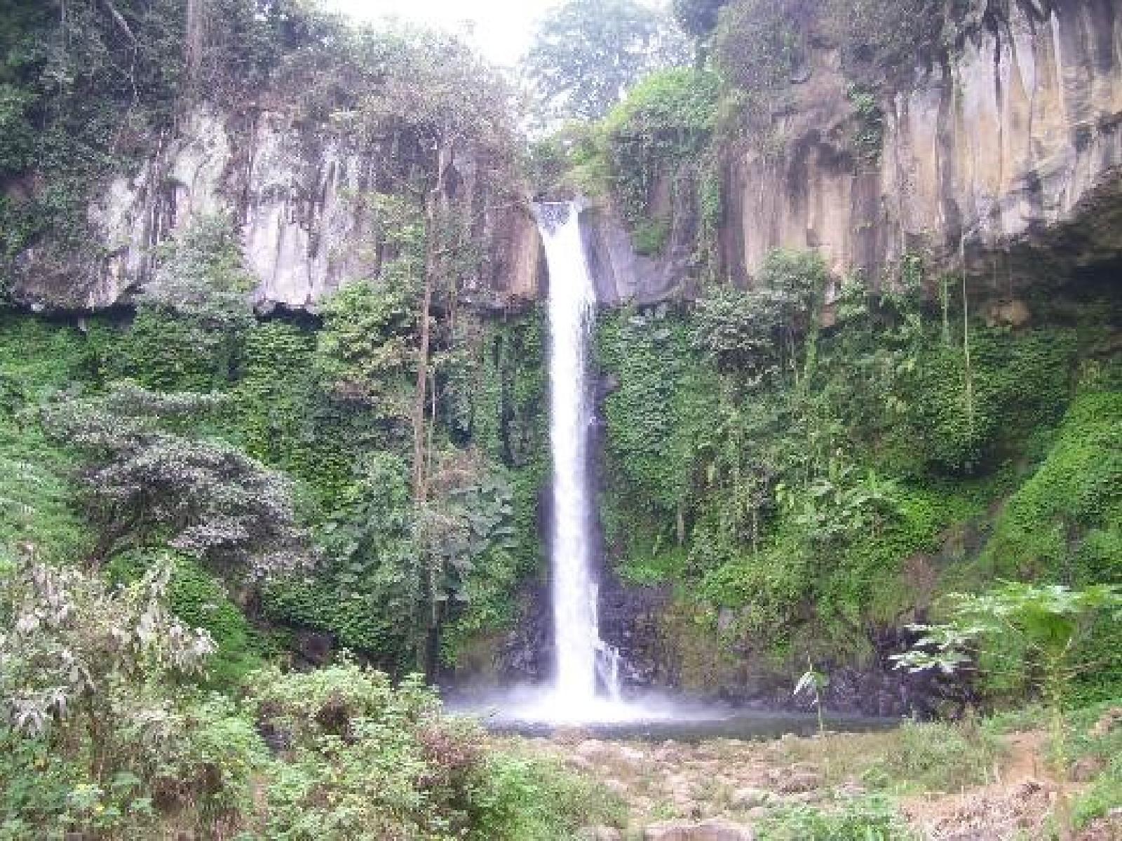 Wikiloc Foto De Coban Jahe Desa Pandansari Lor Kecamatan Jabung