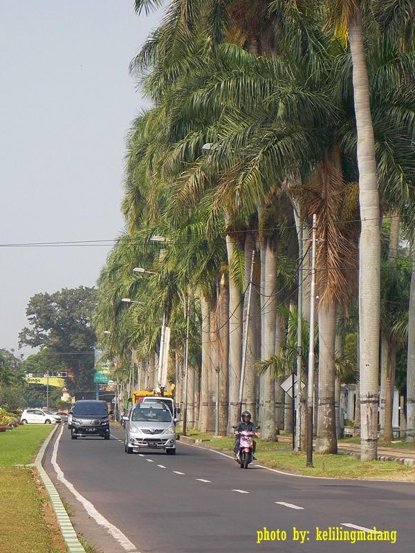 Jalan Idjen Boulevard Keliling Malang Besar Ijen 3 Kab