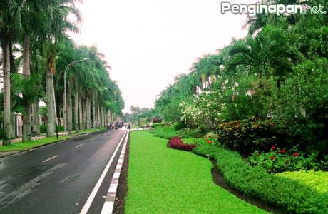 Taman Ijen Boulevard Malang Penginapan Net 2018 Bakorwilmalang Jatimprov Id