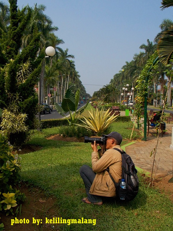 Wajah Monumen Melati Keliling Malang Taman Sebelah Utara Terlihat Dua