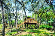 Ahmad Anjarwicaksono Kota Malang Spot Rumah Pohon 32badri Bukan Minum
