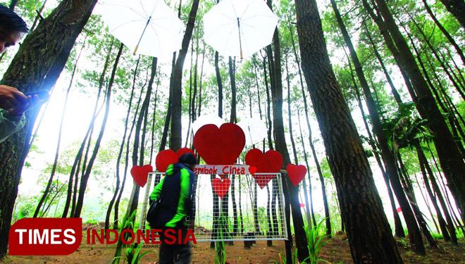Kabupaten Malang Surganya Desa Wisata Times Indonesia Salah Satu Destinasi