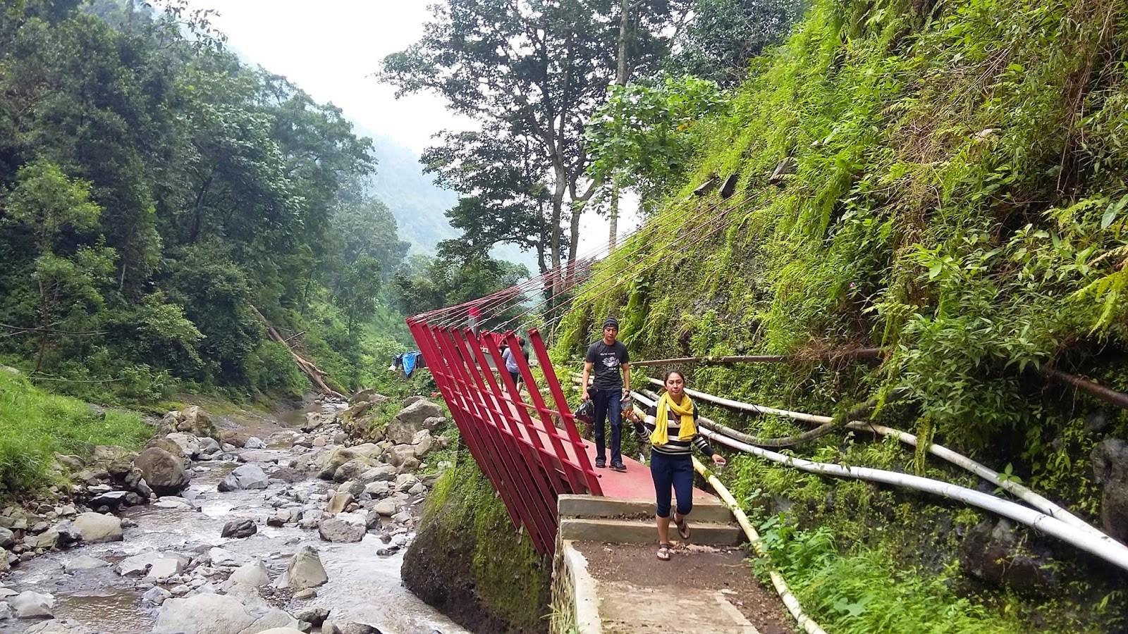 Kampung Enam Wajak Malang Wisata Rumah Pohon Hits Lokasi Air