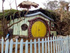 Kampung Enam Wajak Pesaing Hutan Pinus Semeru Ngalam Rumah Kelinci