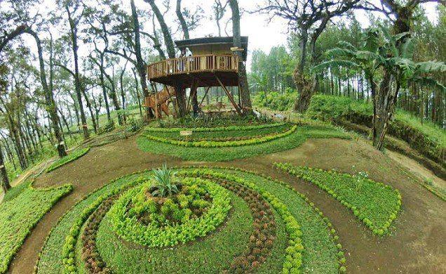 Lokasi Rute Rumah Pohon Kampung Enam Wajak Malang 6 Kab