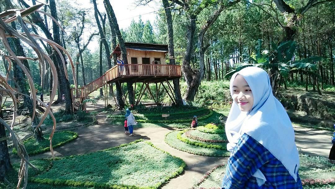 Lokasi Rute Tiket Rumah Pohon Kampung Enam Wajak Malang Kab
