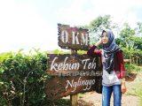 Lokasi Rute Tiket Rumah Pohon Kampung Enam Wajak Malang Kebun
