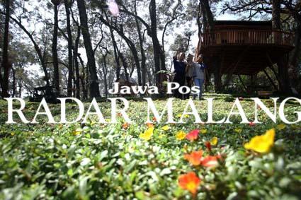 Nikmati Weekend Wisata Kampoeng Enem Wajak Kabupaten Malang Kampung Enam