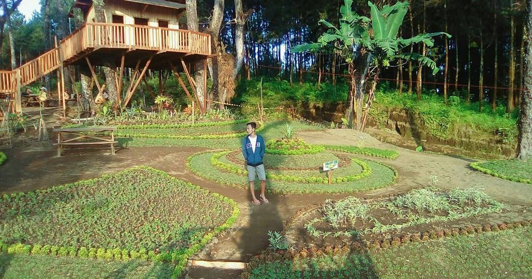Omah Kayu Kampung 6 Wajak Perlu Kamu Kunjungi Photomalang Enam
