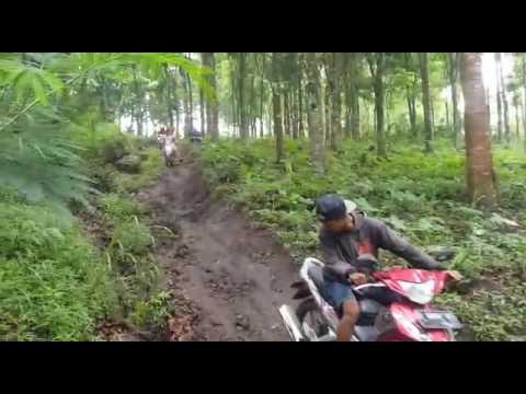 Pesona Hutan Patokpicis Kec Wajak Youtube Kampung Enam Kab Malang