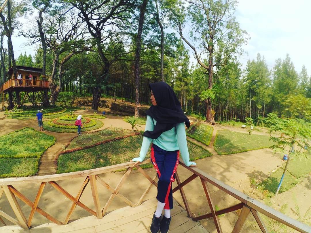 Rute Lokasi Kampung Enam Wajak Malang Wisata Rumah Pohon Kab