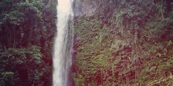 Rute Lokasi Rumah Pohon Kampung Enam Wajak Malang Tiket Masuk