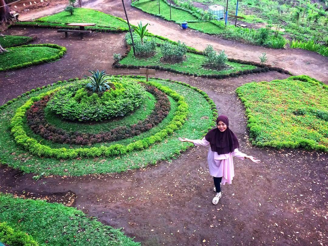 Spot Kece Kekinian Rumah Pohon Kampung Enam Wajak Malang Bunga