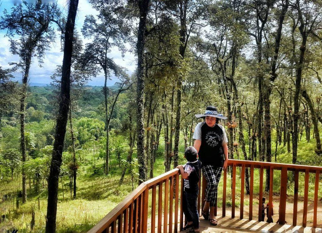 Tak Kalah Kabupaten Malang Punya Wisata Kekinian Instagenic Kampung Enam