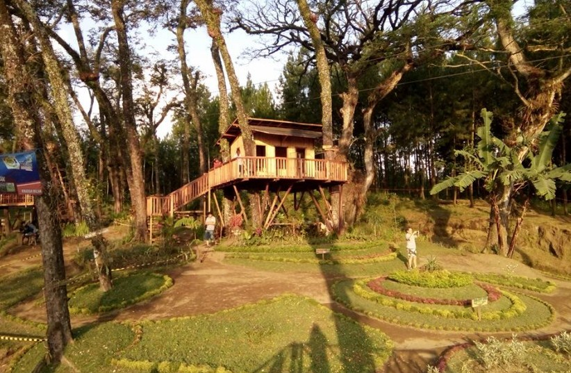 Tempat Wisata Rumah Pohon Kampung Enam Wajak Malang Tempatku Kab