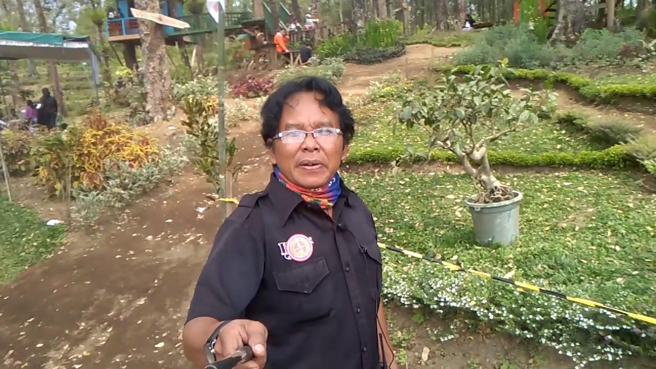 Wisata Kampoeng 6 Desa Patuk Picis Kec Wajak Kab Malang