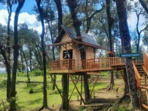 Wisata Kekinian Kampung Enam Malang Amazing Apalagi Depan Rumah Pohon