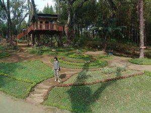 Wisata Kekinian Kampung Enam Malang Amazing Kamu Bisa Mencoba Hal