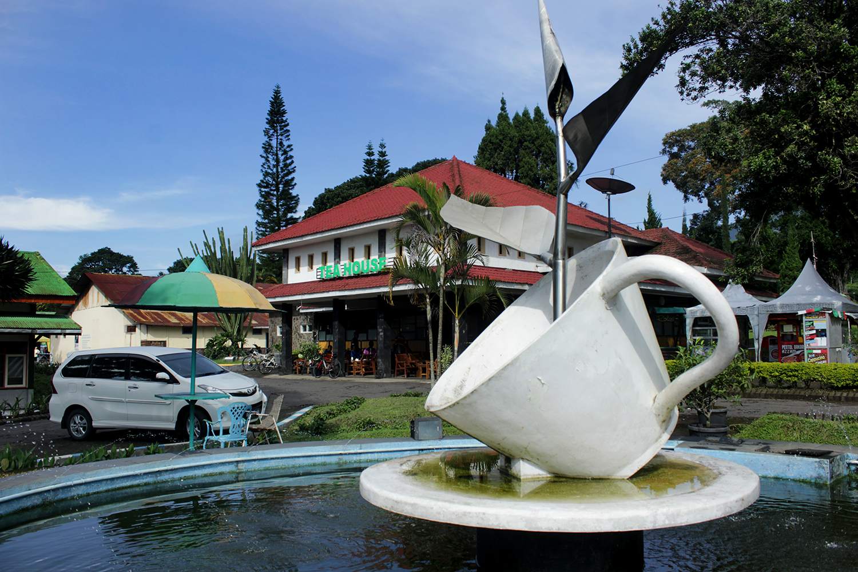 Kebun Teh Wonosari Kawasan Agrowisata Malang Traveler Indonesia Perkebunan Hadir