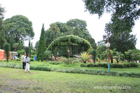 Kebun Teh Wonosari Lawang Malang Sejuk Damai Wisata24 Agrowisata Sumber
