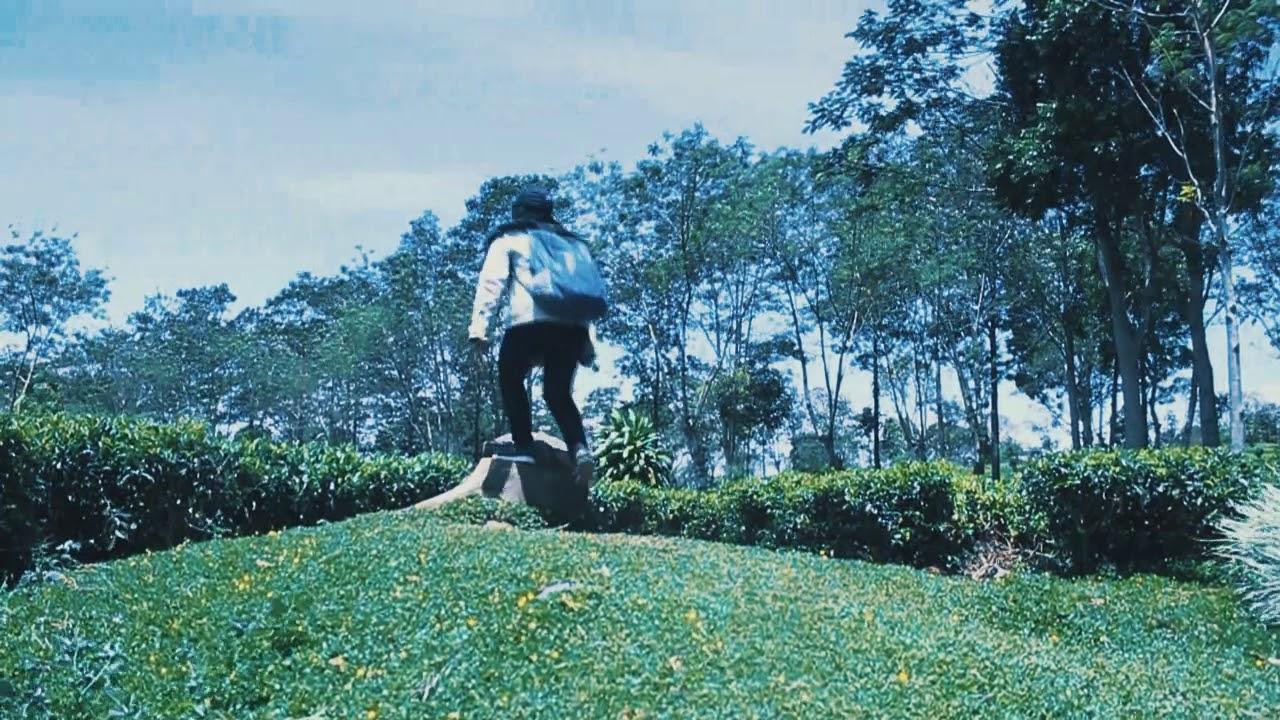Kebun Teh Wonosari Lawang Malang Youtube Kab