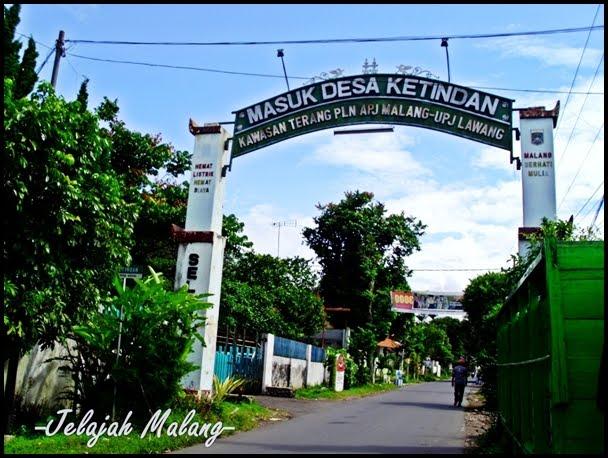 Kebun Teh Wonosari Petualangan Malang Kab