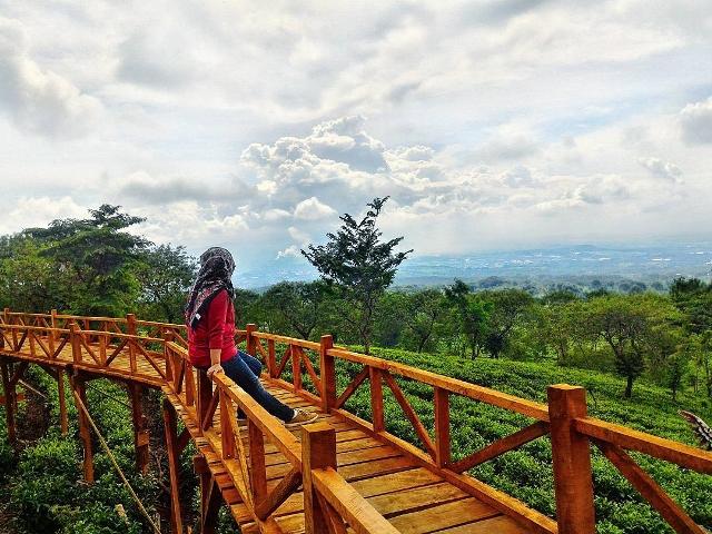 Lokasi Rute Menuju Bukit Kuneer Malang Destinasi Wisata Alam View