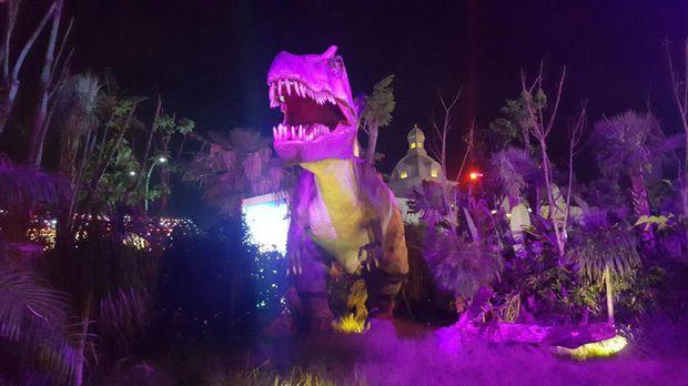 Hangat Malang Night Paradise Dibuka Rex Kab