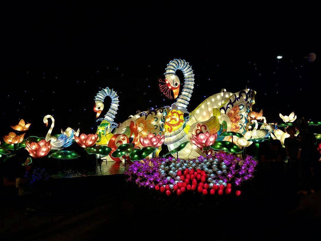 Nabil Alfahmi Bersama Bintang Terbang Ditengah Awan Malang Night Paradise
