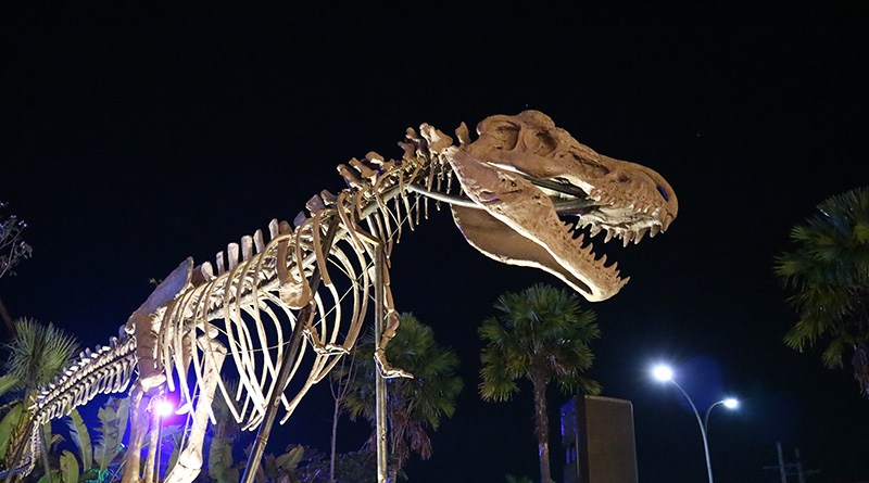 Rasakan Sensasi Menjelajahi Taman Dinosaurus Kota Malang Ilovemalang Night Paradise