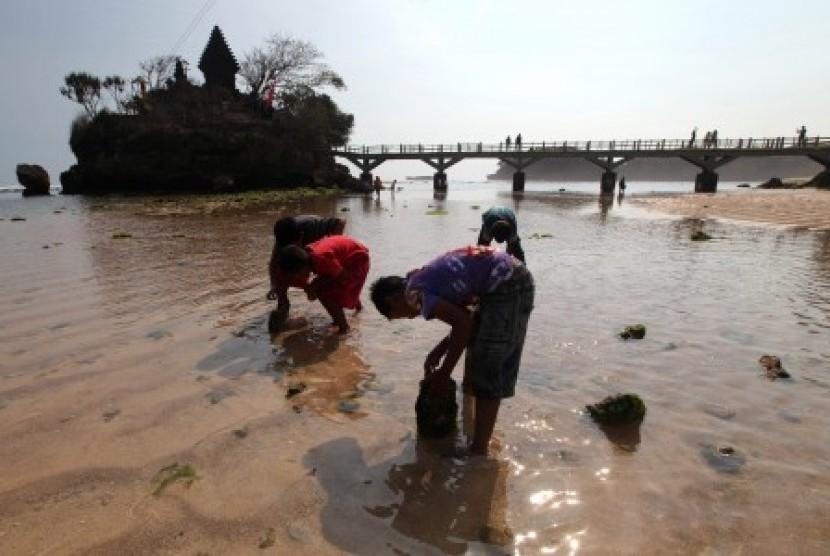 Digelar Sejumlah Pantai Malang Rayakan Ultah Republika Online Wisatawan Bermain