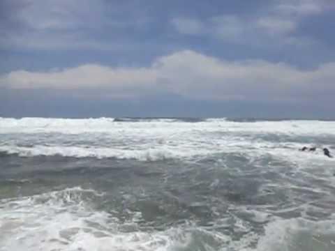 Pantai Jonggring Saloka Malang Youtube Saloko Kab