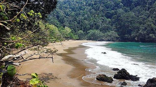 Pantai Kaliapus Prongapus Bobi Lokasi Desa Tambakrejo Kecamatan Sumbermanjing Wetan