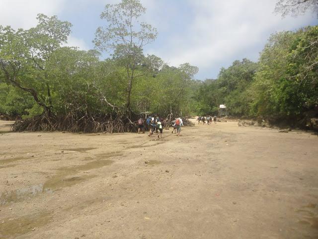 Pantai Malang Raya Backpacker Jawa Timur Referensi Halaman Tempat Public