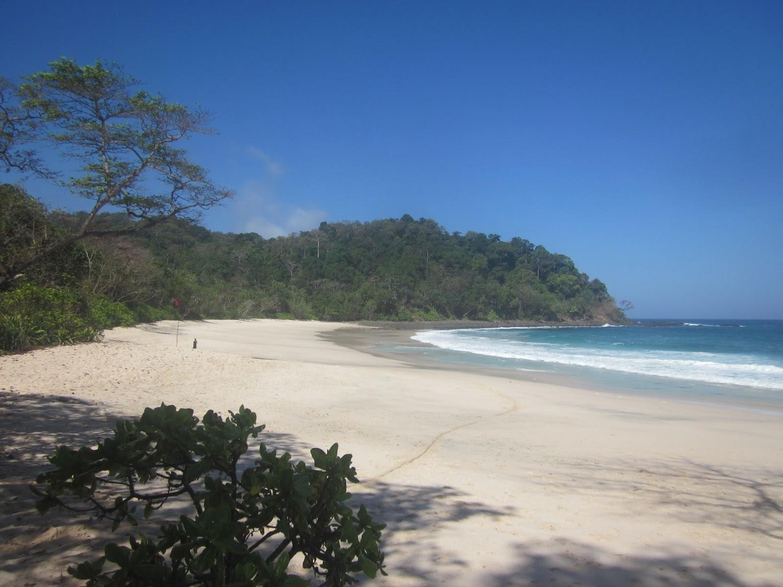 Pantai Sendiki Whiempy Kaliapus Kab Malang