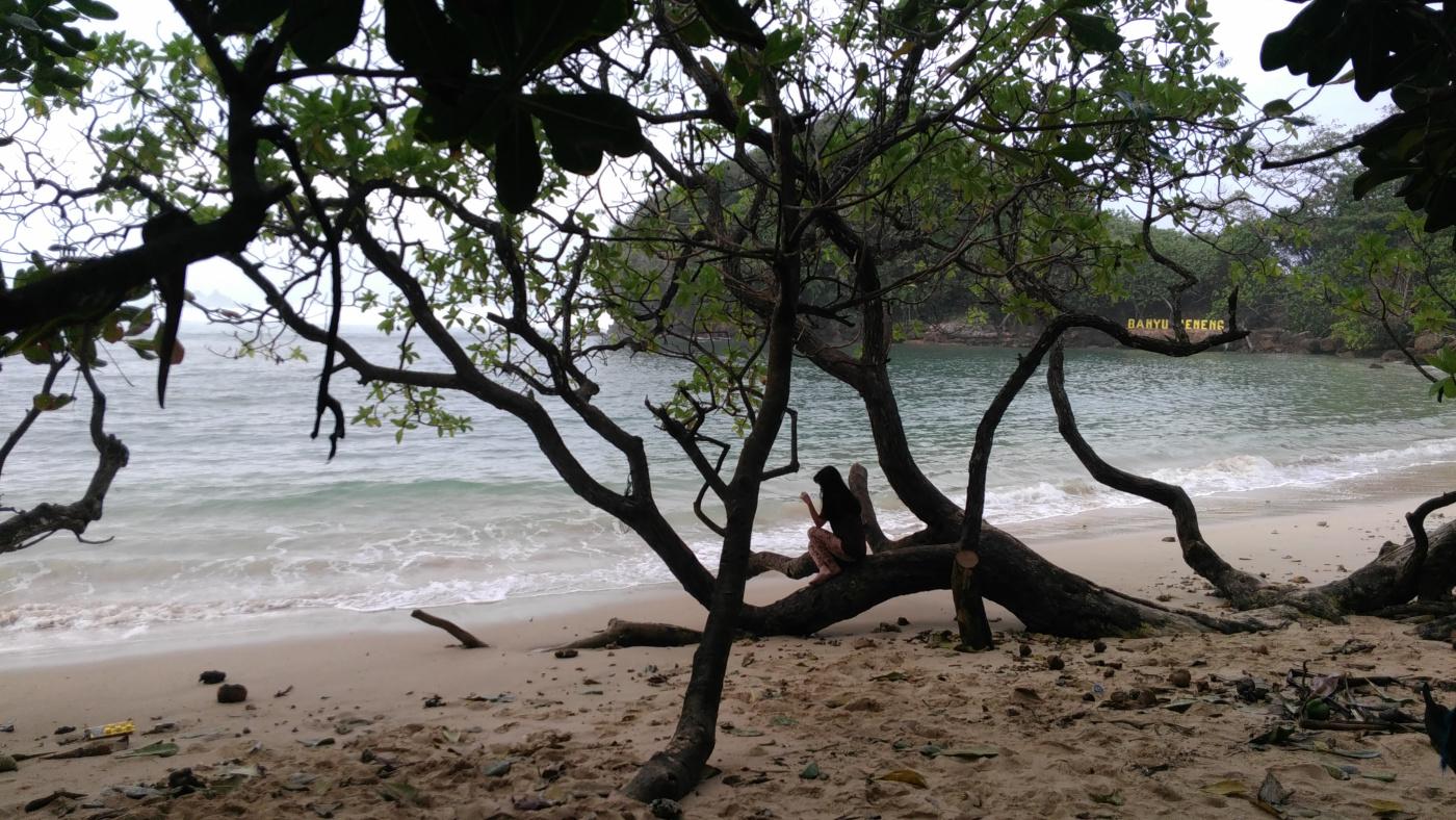 Jatim Catatan Pribadi Pantai Banyu Meneng Selok Malang Kab