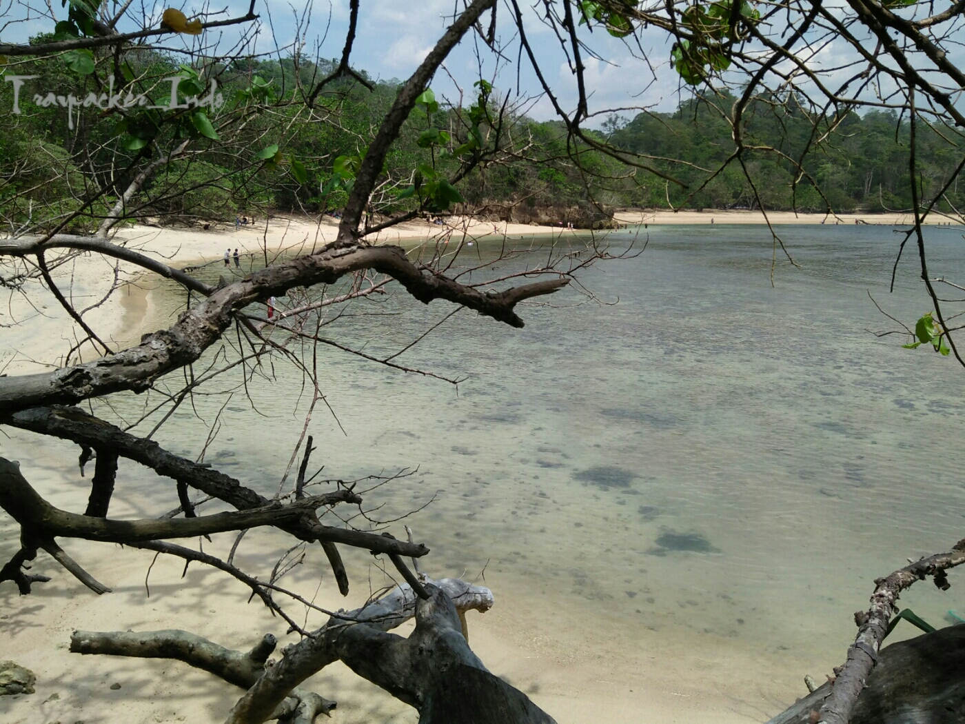 Ketenangan Pesona Pantai Banyu Meneng Malang Selok Kab