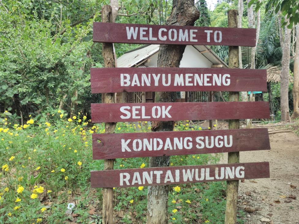Pesona Pantai Selok Kabupaten Malang Tempat Parkiran Disediakan Berada Kawasan