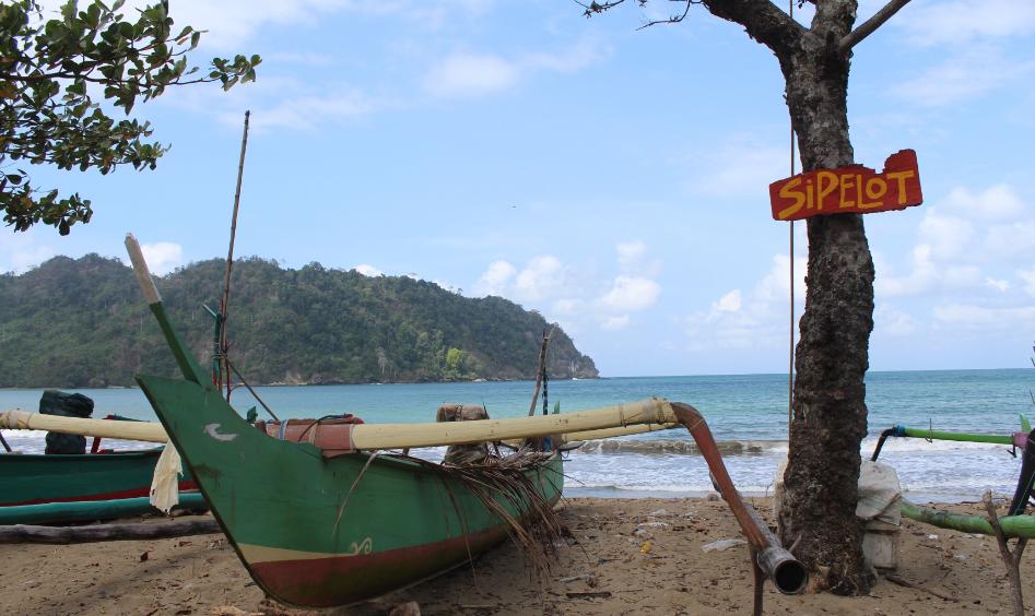 4 Alasan Tempat Wisata Perawan Pantai Sipelot Malang Alun Kota