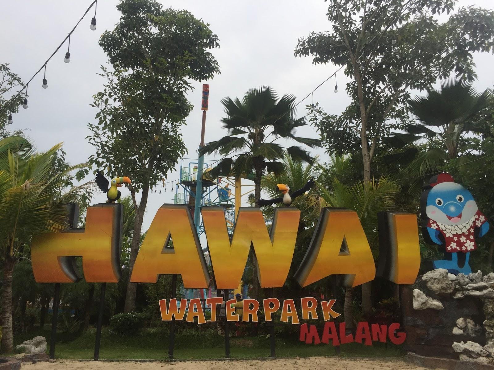 Amri Sianturi Berburu Tsunami Hawai Waterpark Malang Mungkin Diantara Kita