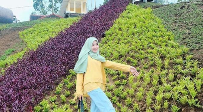 Bagpacker Destination Bukit Hobbit Malang Indonesia Tak Fasilitas Taman Cukup